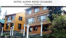 Hotel Alpine Ridge